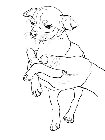 The drawing of chihuahua in human hand Illustration