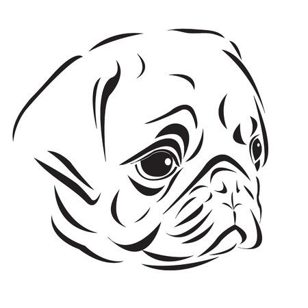 állat fej: A vonal művészete mopsz fej