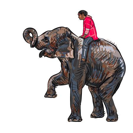 Elephant toon en training met mahout