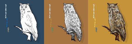 Siberian eagle owl, or Bubo bubo sibiricus.vector Ilustrace