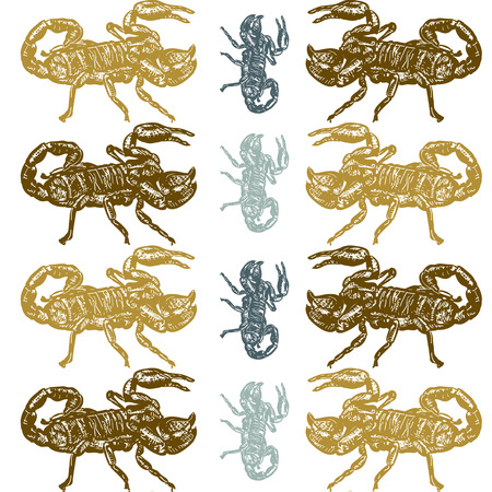 Seamless pattern of scorpion on white background Vector