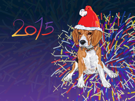 fire works: Beagle wear christmas hat with fireworks background design for newyear 2015 card
