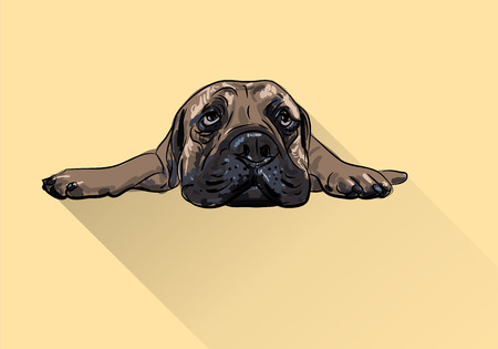 Drawing of  lying bull mastiff with long shadow on yellow background