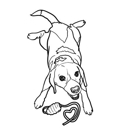beagle: Adorable puppy beagle cheerfully playing toy Illustration