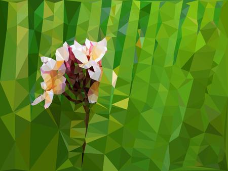 plumeria flower: Low poly geometric of Plumeria flower on green background