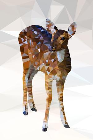 white tail deer: Low poly geometric of deer,vector triangular shape mosaic Illustration