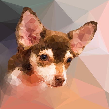 triangular shape: Low poly geometric portrait of chihuahu dog, triangular shape mosaic style Illustration