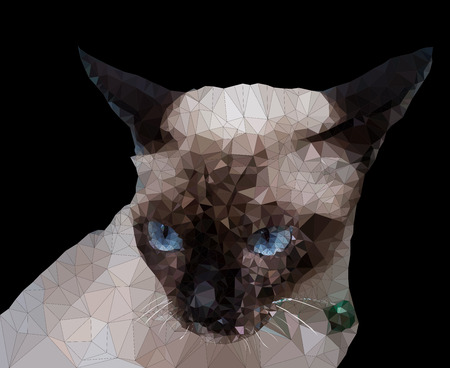 siamese: Low poly geometric of Siamese cat, triangular shape mosaic on dark background Illustration