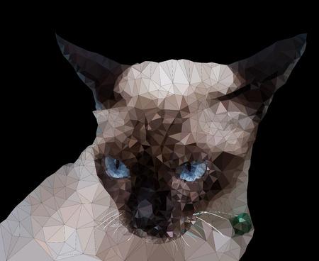 siamese: Low Poly geometrischen der siamesischen Katze, dreieckige Form Mosaik auf einem dunklen Hintergrund Illustration