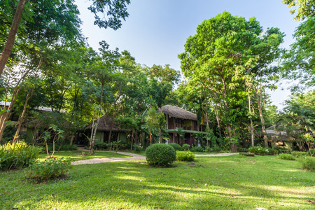 hospedaje: Jardín verde Shady y patio con un pequeño alojamiento Foto de archivo