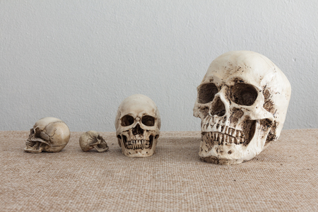 sack cloth: Set of skulls on brown sack cloth and gray background Stock Photo