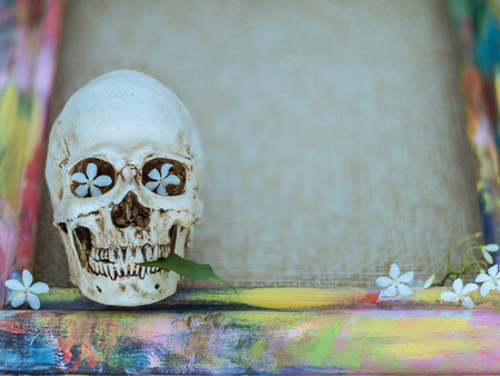 religiosa: Tiny skulls with colorful wooden frame and Wrightia religiosa flower Stock Photo
