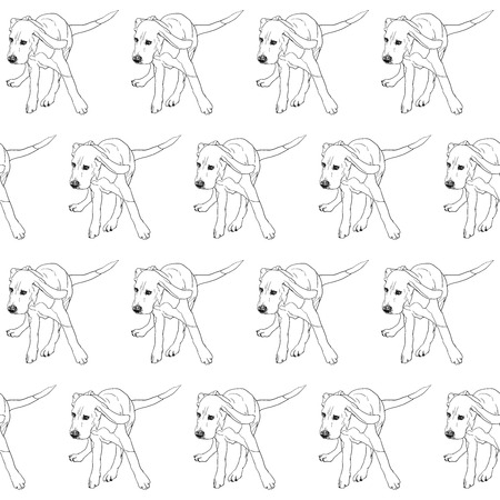 beagle: Seamless pattern of running beagle on white background,vector illustration