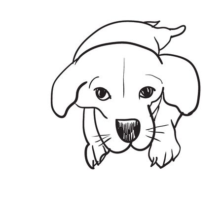 tri  color: Doodle drawing of lying beagle on white background
