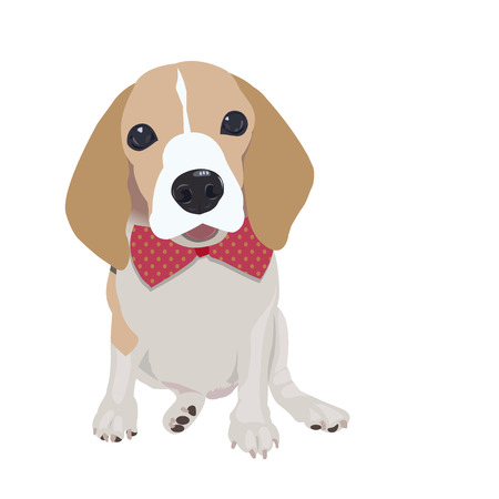 queen elizabeth: Cute Queen Elizabeth Pocket beagle with red bow on white background Illustration