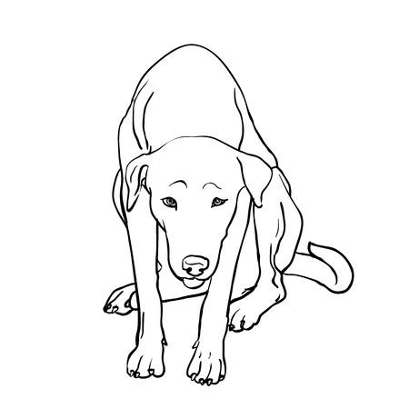Zeichnung traurig streunender Hund sitzt auf weißem Hintergrund