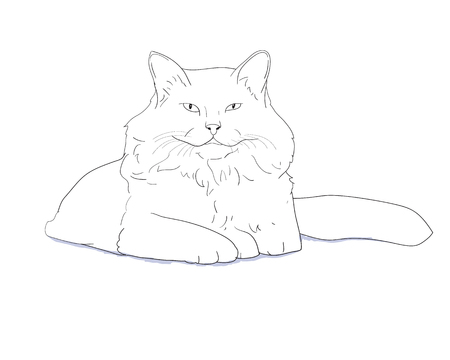 little one: White furry cat laying on white,vector illustration