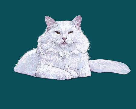 furry: White furry cat laying on green,vector illustration Illustration