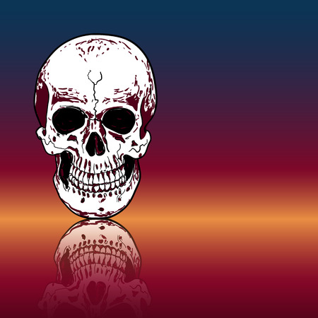 Drawing human skull with reflection on color background,vector illustration