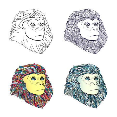 Drawing of set of  monkey head with pattern for coloring on white background