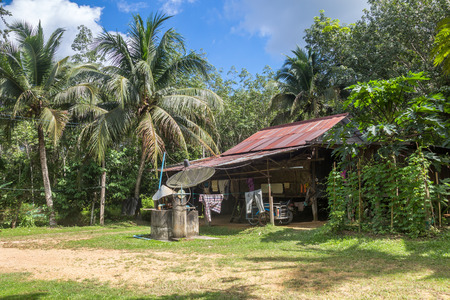 galvanized: Hut of gardener in rubber tree garden with papaya and coconut in southern of Thailand Stock Photo