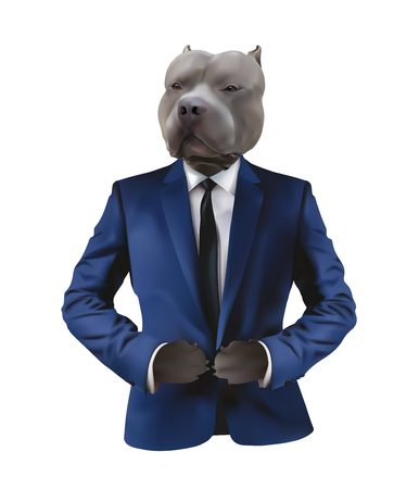 Pitbull in man suit on white background,concept for confidence,fierce and serious character Illustration