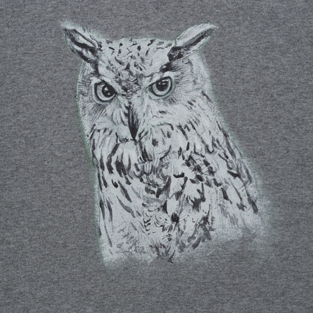 Drawing and painting of Siberian eagle owl, or Bubo bubo sibiricus on gray fabric Stock Photo