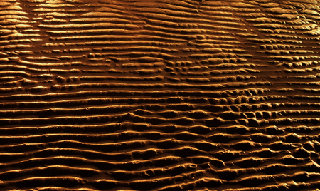 Sand at the beach traced by wave with golden light and shadow Stock Photo