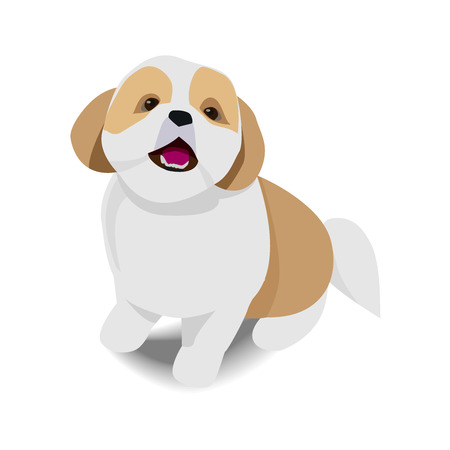 Adorable sitting brown and white dog with shadow on white background vector illustration.