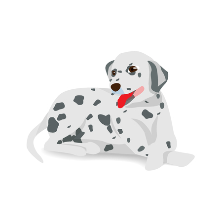 Dalmatian sitting on floor with shadow,vector illustration