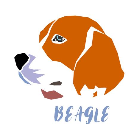 Beagle dog head on white background, vector illustration.