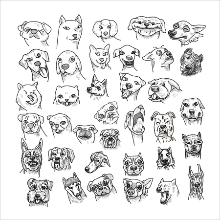 Hand drawn of dogs head set isolated on white background. Caricature cartoon of dogs, vector illustration. Ilustração