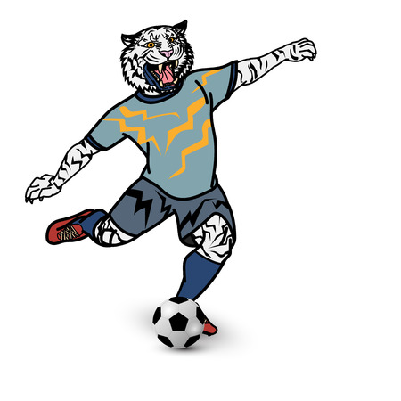 Tiger football player is kicking football on white background, animal cartoon for sport and exercise concept, vector illustration.