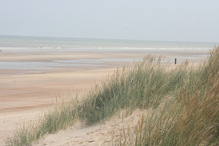 An dune,overgrown with beach grass, the ocean in the background