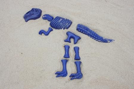t rex: AT Rex, van blauw enkele fragmenten ontworpen in zand