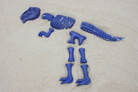 modell: A T Rex, from blue single fragments designed in sand Stock Photo