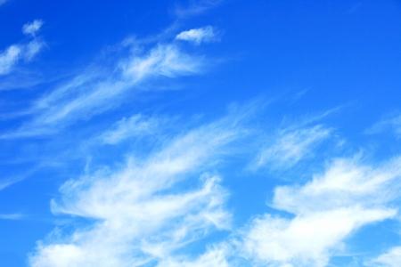 altocumulus: Big fluffy clouds  Altocumulus  with beau