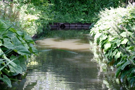 watercourse: one of green plants trimmed narrow watercourse Stock Photo