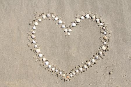 beachcombing: Various shells, shaped into a heart