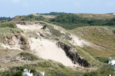 north sea: Dunes on the North Sea in the Netherlands Stock Photo