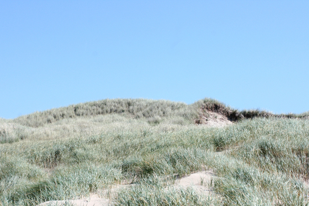 Dunes on the North Sea in the Netherlands Stock Photo