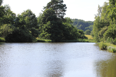 Detail view of a small romantic lake, with trees