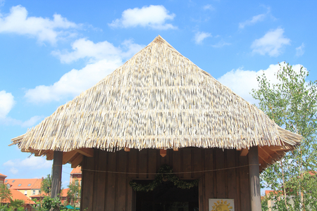 Shed with thatched roof, blue sky in the background Stock Photo