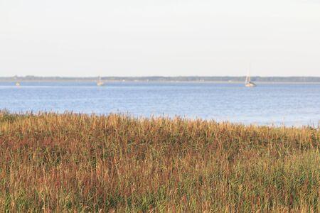 The island of Bock lies in the Baltic Sea southwest of the island of Hiddensee and east of the peninsula of Zingst Bock ist eine unbewohnte Insel in der Ostsee in Vorpommern zwischen der Halbinsel Zingst und der Insel Hiddensee
