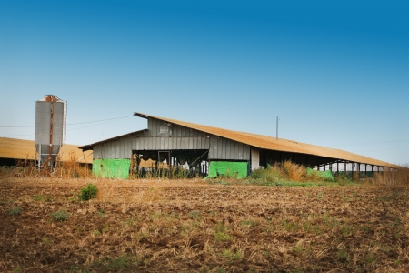View across a fallow agricultural field to a large open sided farm barn and metal storage silo photo