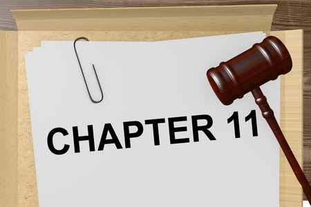 11: Chapter 11 Title On Legal Documents