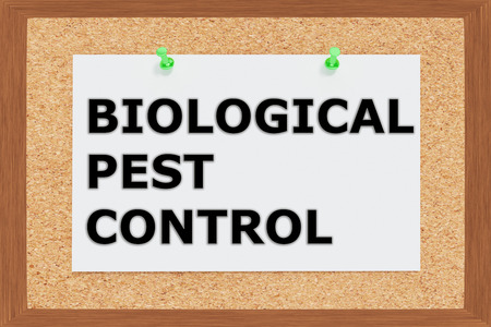 troublesome: Render illustration of Biological Pest Control Title on cork board