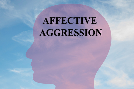 doldrums: Render illustration of Affective Aggression title on head silhouette, with cloudy sky as a background.