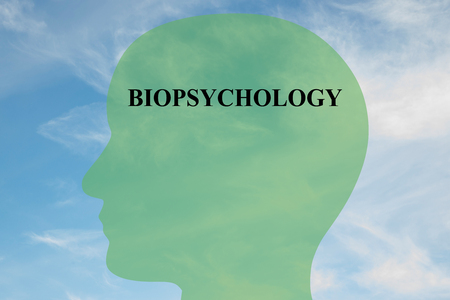 traditional healer: Render illustration of Biopsychology title on head silhouette, with cloudy sky as a background Stock Photo