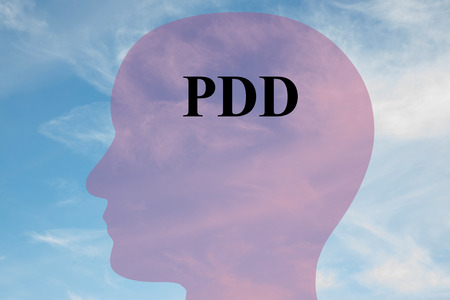 Render illustration of PDD (Pervasive  Developmental Disorders) title on head silhouette, with cloudy sky as a background.